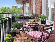 Những điều cần lưu ý khi trồng cây tại nhà